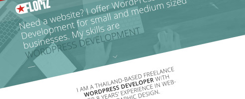 WordPress webdeveloper